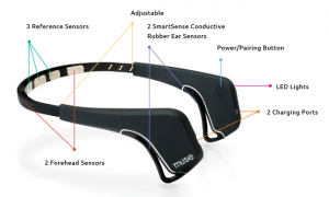 brain sensing wearable